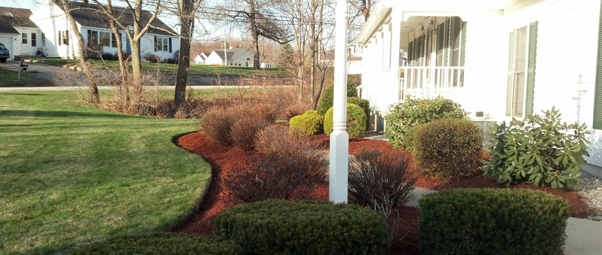 Edging enhances the look of a landscaped bed