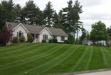 Supreme Landscaping offers weekly and bi-weekly mowing plans