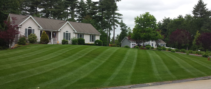 Weekly and bi-weekly mowing plans available